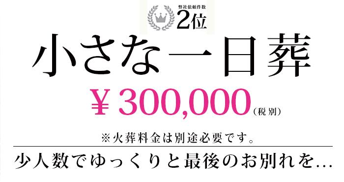 小さな一日葬 30万